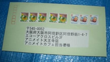 3_20121228220821.jpg
