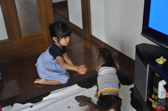 DSC_0567_20120920100238.jp<br />g
