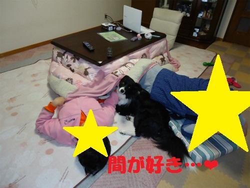 004_20121213221956.jpg