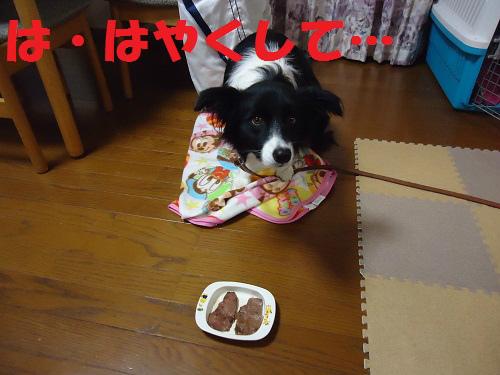 010_20121224215351.jpg