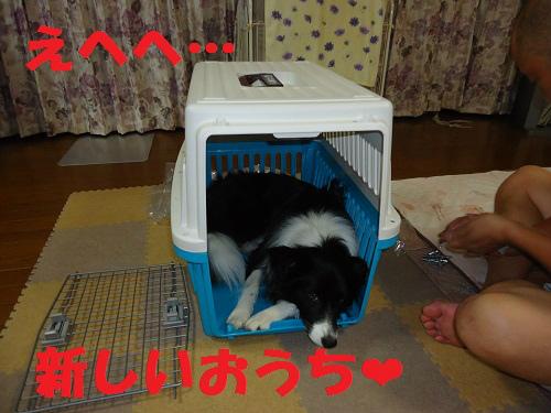 015_20120915215557.jpg