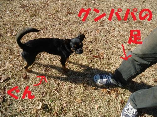 021_20121121213731.jpg