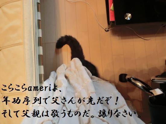 10_20120515082023.jpg