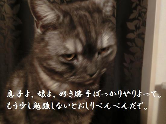 1_20120515081954.jpg