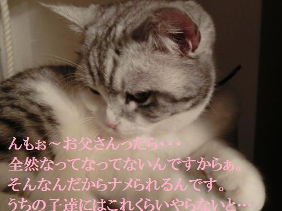 6_20120515081951.jpg