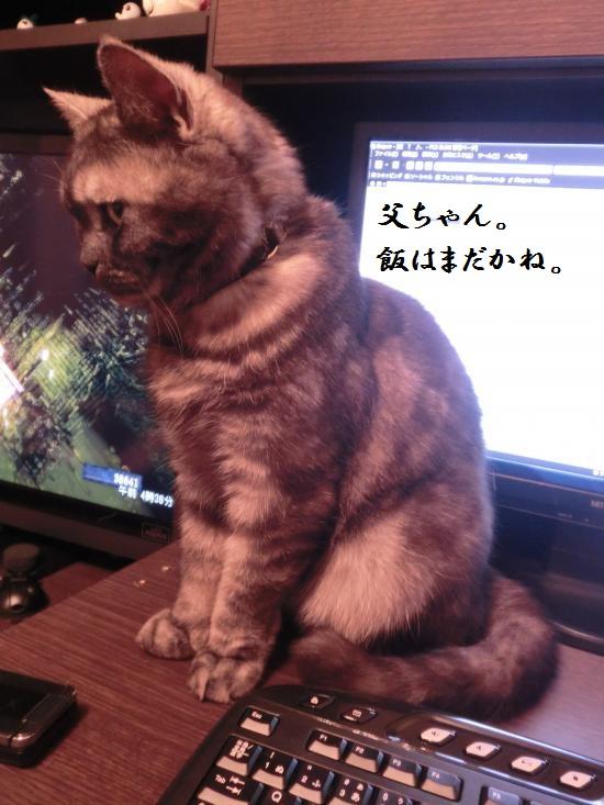 6_convert_20120505051421.jpg