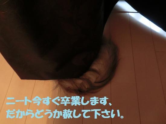 8_20120515082025.jpg