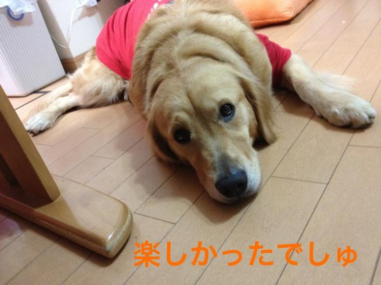 20121011202711b75.jpg