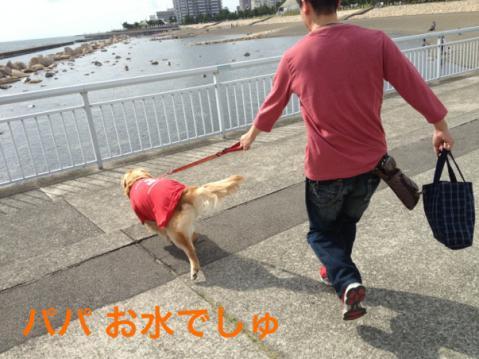 4大蔵海岸