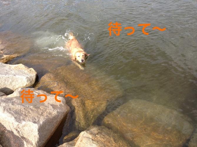 2012101320210657e.jpg