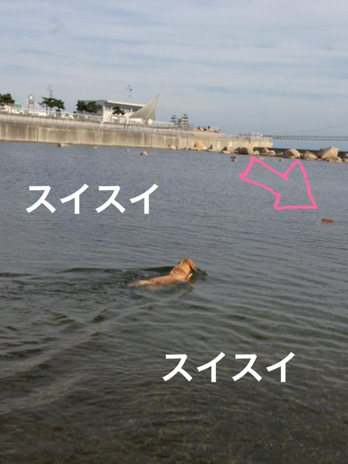 20121014182509cde.jpg