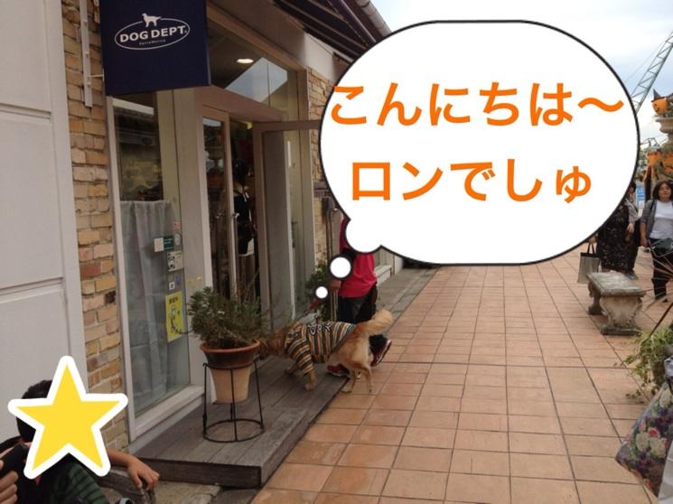 201210152137001d5.jpg