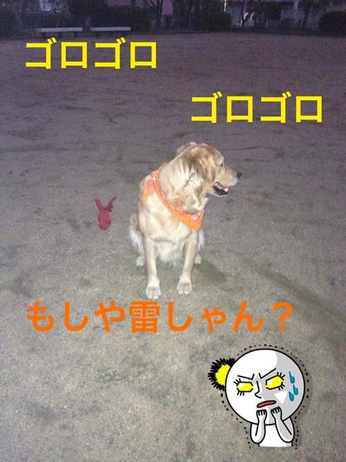 20121029205212884.jpg