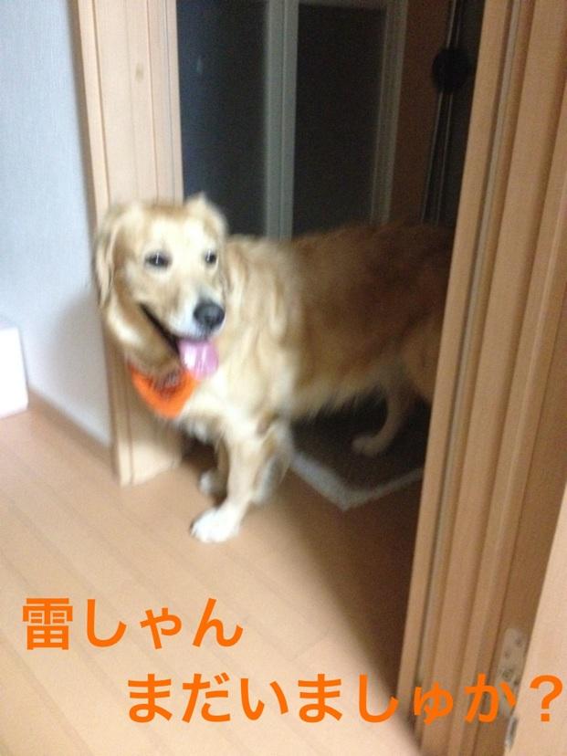 201210292052521d2.jpg