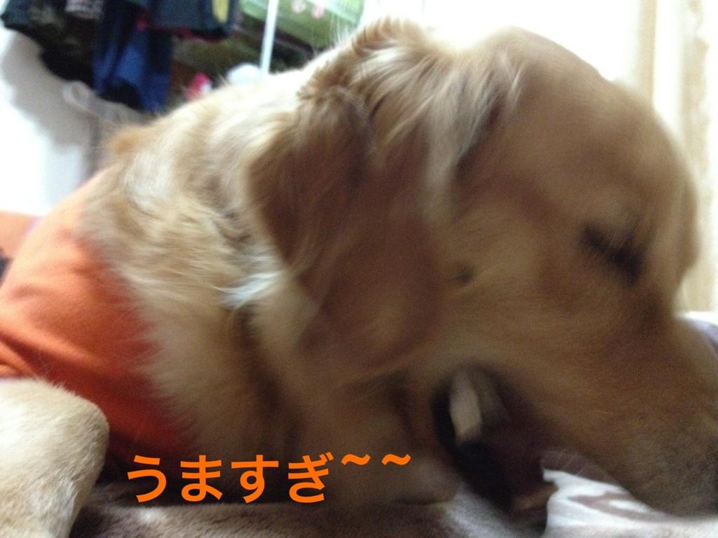 20121104175142dec.jpg