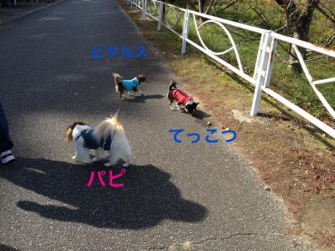 3人IMG_7921