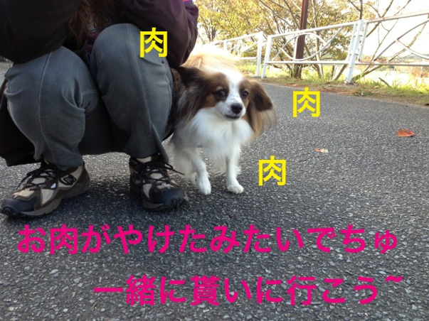 20121105223846c3c.jpg