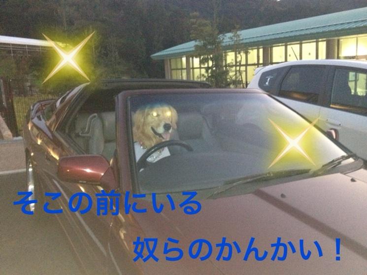 201211102154541f0.jpg