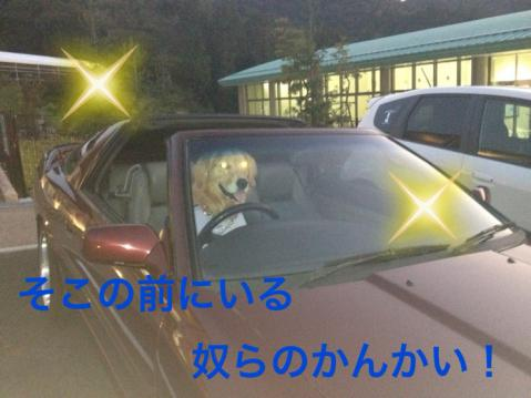 IMG_1866ノケ