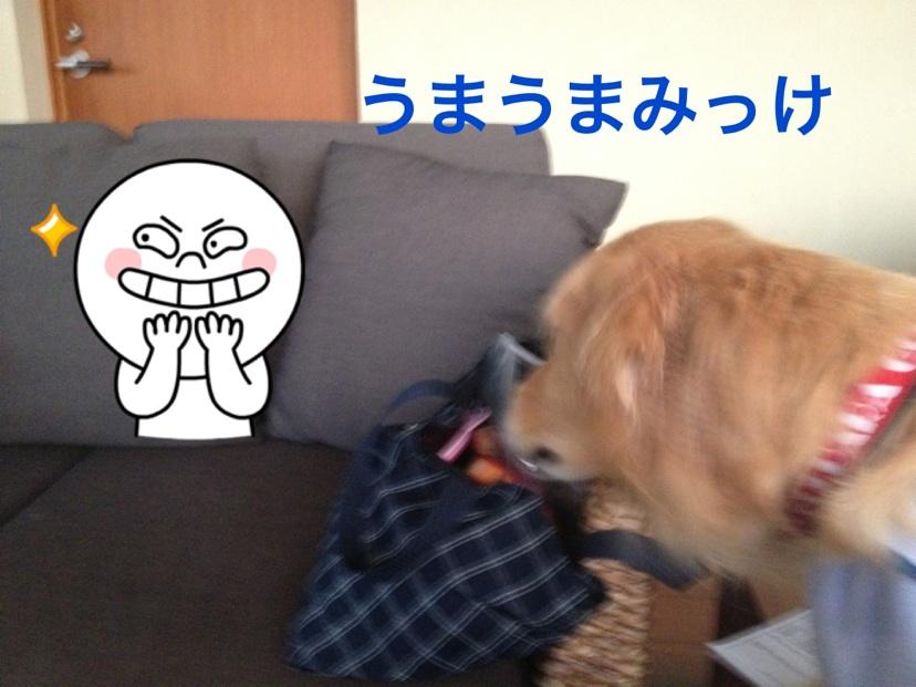 201211102155311f4.jpg