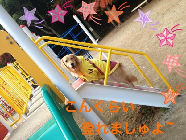 20121123202908ade.jpg
