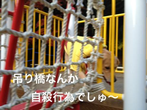 吊り橋IMG_4471