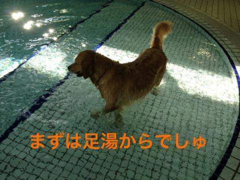 足湯IMG_3299