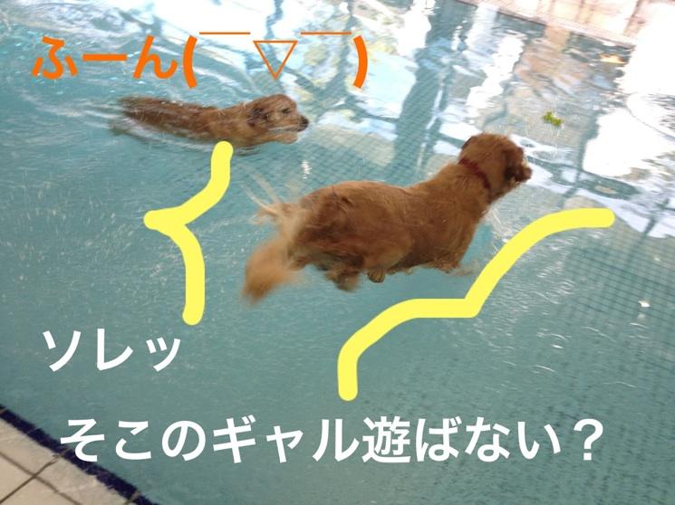 20121128075047713.jpg