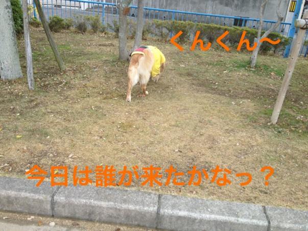 201211292147284ae.jpg