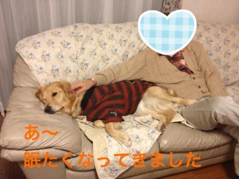 IMG_0536眠たい