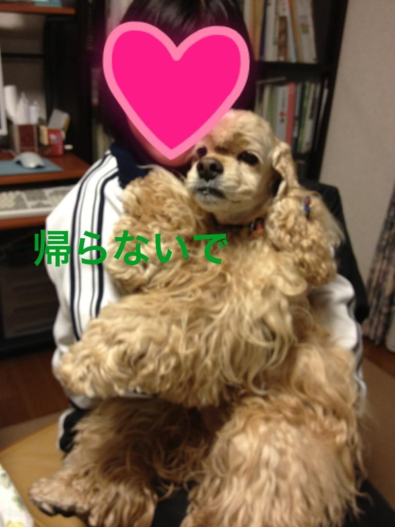 201211302313155f8.jpg