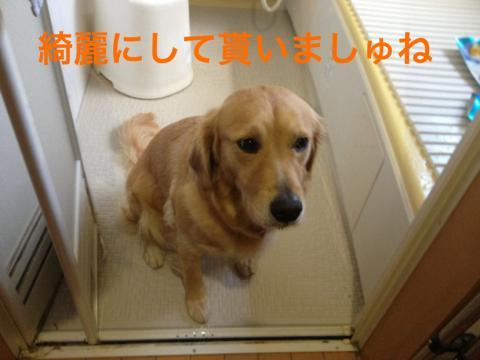 IMG_5682お風呂