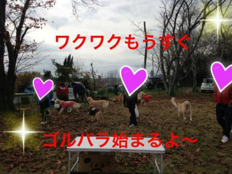 IMG_0831ワクワク