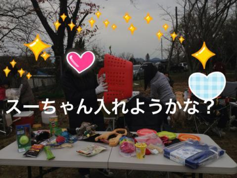 IMG_6540スーちゃん