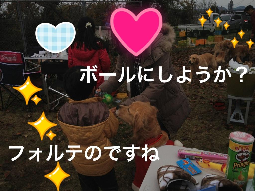 201212080007262db.jpg