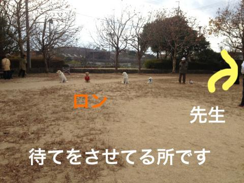 IMG_4649訓練