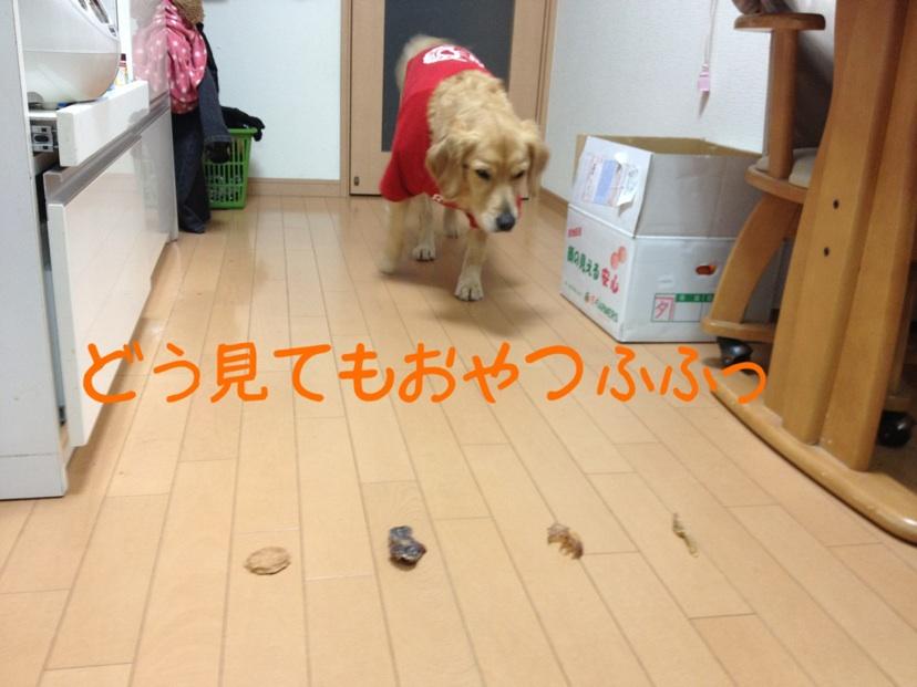 20121219213644de3.jpg