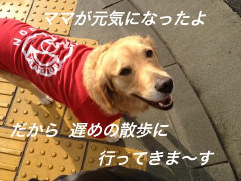 IMG_9746元気