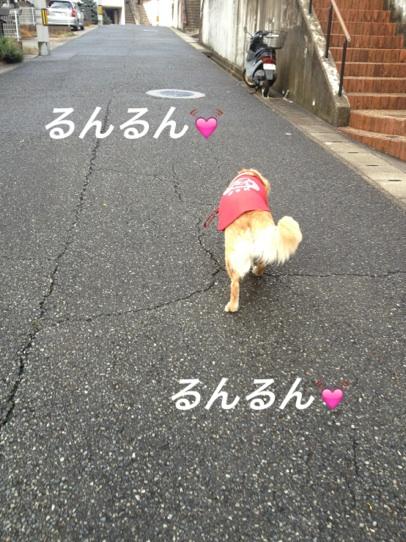 IMG_6694るんるん