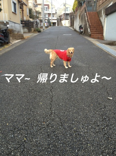 IMG_6081帰る