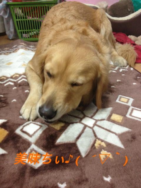 IMG_2543おいちぃ