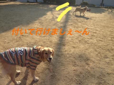 IMG_7969ついて