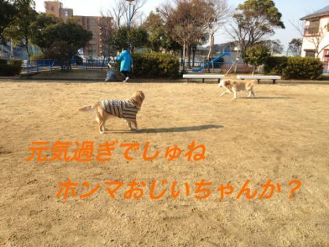 IMG_9263元気