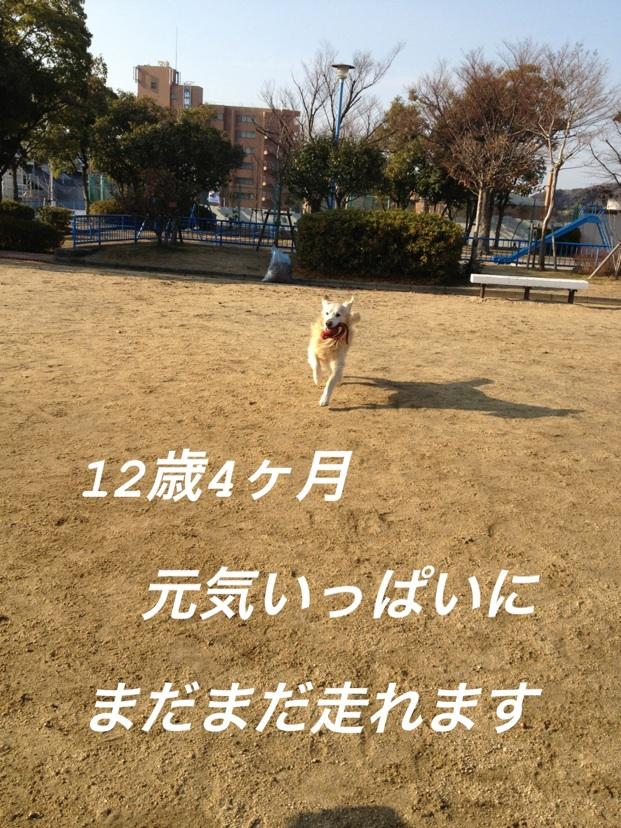 201301072238016cf.jpg