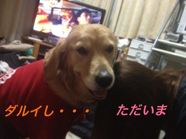 20130113223820e6d.jpg