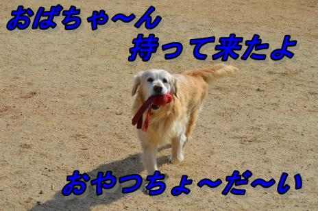 DSC_0028サ