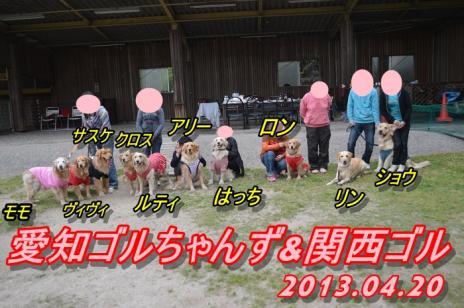 DSC_0378愛知