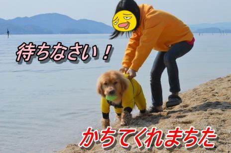 DSC_0035_20130511212615.jpg