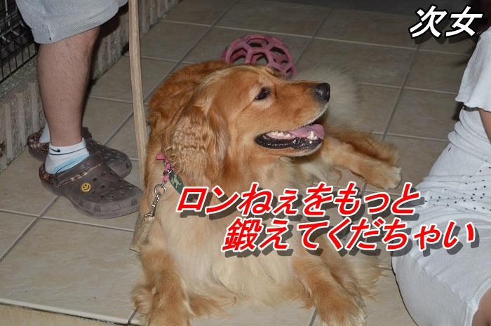 DSC_0120_20130626213650.jpg