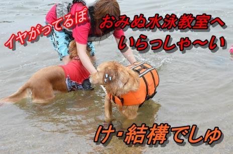 DSC_0170_20130611214723.jpg